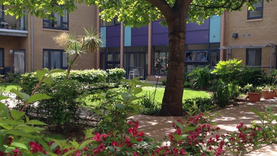 Tamar Court garden area