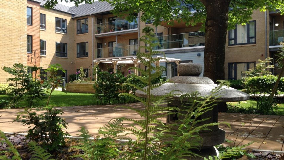 Tamar Court garden area, fern fronds