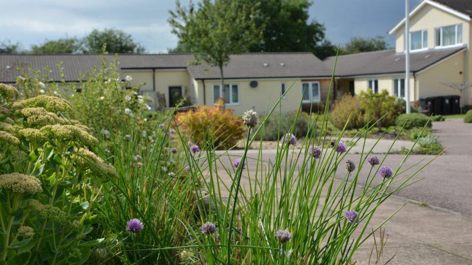Landscape design architectural services and consultancy
